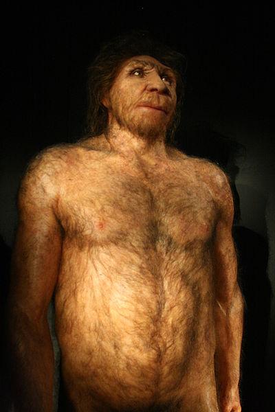 Homo Heidelbergensis model