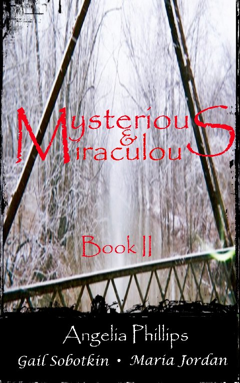 The cover photo for Mysterious & Miraculous Book II was taken by Alicia Jaye Phillips and is used here with her permission.