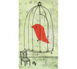 A Caged Bird that flew away