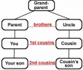 Roles That Make Cousins Special