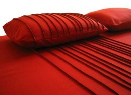 Red is a vital, basic color.It's the color of temptation & allure. It's  the color of sensuality. It is a color  of MAJOR impact & AUDACIOUS statement. It's BOLD. It's DARING, ADVENTUROUS & not in the least, EXCITING