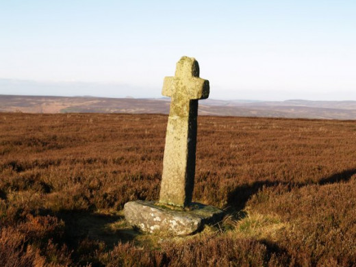 Little Ralph Cross on the high moors offers no shelter - unless you're a small creature - but acts as a useful waymarker.