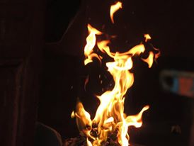 Precaution from Fire:Keep Safe Your Tree
