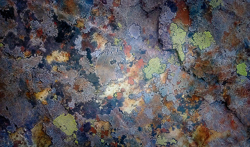 Microcosm/Macrocosm from Douglas Knisely flickr.com
