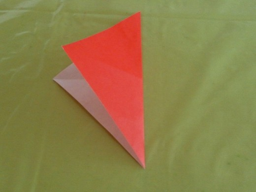 Fold in half again from right to left.