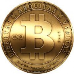 the logo for BitCoin. Often you will see it abbreviated as BTC.