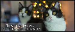 Tips for Taking Holiday Portraits