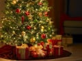 Real Christmas Trees-selecting the best one!
