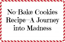 No-Bake Cookies Recipe-A Journey Into Madness