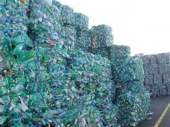 Bottled Wate: Why Cut Back On Plastic
