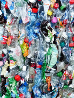 Recycling Plastic and Reducing Poverty - The Plastic Bank