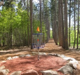 Hole #4 Blue Ribbon Pines