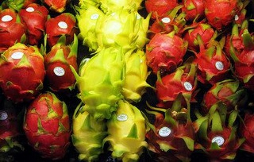 Red-skinned and Yellow-skinned Dragon Fruits or Pitayas