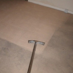 Importance of Carpet Cleaning and Benefits of Hiring Professionals