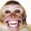 Myweeklytroll profile image