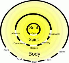 Bodymind, spirit, soul configuration in an individual