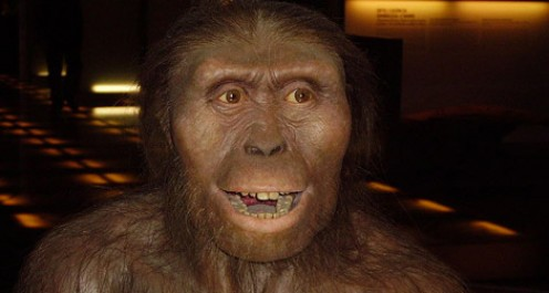 Artist rendering of Australopithecus afarensis.