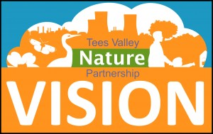 Their site can be found on Twitter, tweet to them @Tees Valley NP