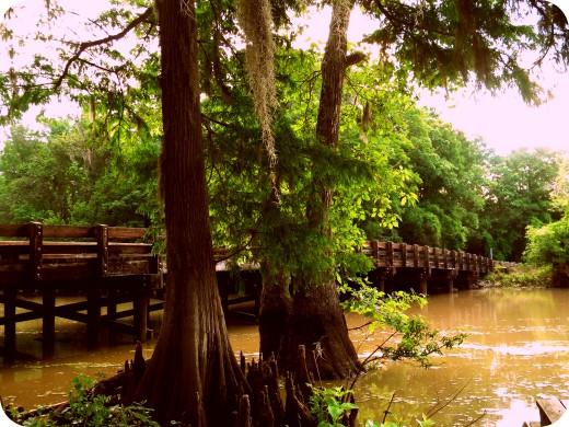 Bridge in Lacassine, Louisiana