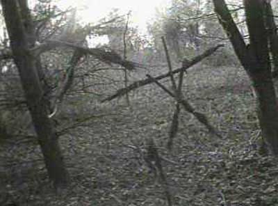 Another famous frame from the Blair Witch Project.