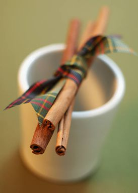 Cinnamon sticks are great to chew on.
