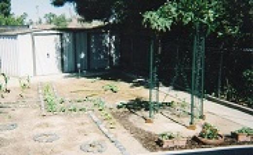 2010 Tabernacle Garden