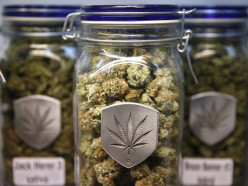 What are your feelings on the legalization of marijuana in Colorado?