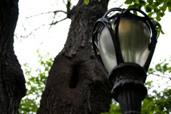 Top 3 Garden Lights Choices To Light Up Your Yard
