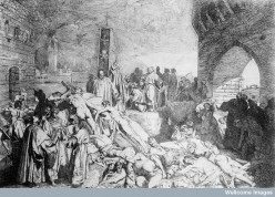 The Black Plague:  Everything You Didn't Need to Know