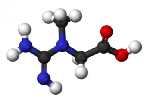 model of creatine molecule