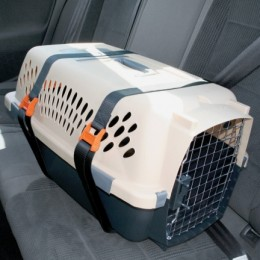 Kennel straps wrap around the carrier, and are then secured with the safety belt of the car.