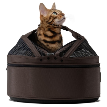 A crash tested pet travel carrier is a great way to take your cat anywhere and protect his safety at the same time.