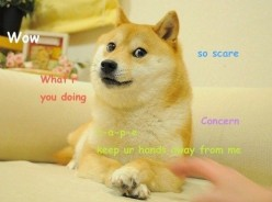 What Actually is Dogecoin?