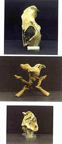 Bird - neanderthal art