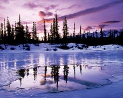 BORDERS OF ICE LAY { American Haiku }