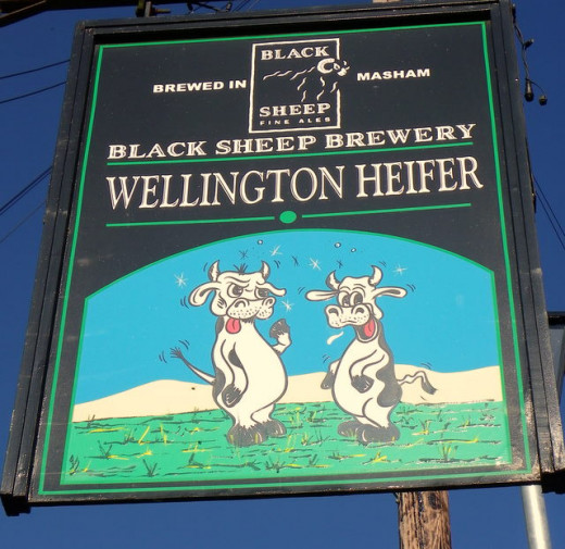 The Wellington Heifer Public House - this one at Ainderby Steeple near Northallerton is part of the Black Sheep Brewery chain of Masham