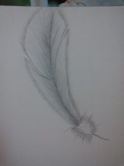 doodles, just a simple feather.