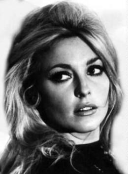 'Sharon Tate', her horrific murder shocked the world.