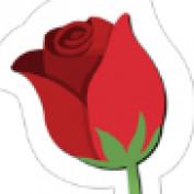 jojo29 profile image