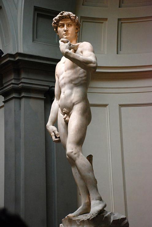 http://en.wikipedia.org/wiki/File:Michelangelo%27s_David.JPG