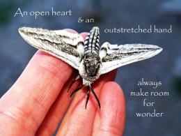 An open heart...