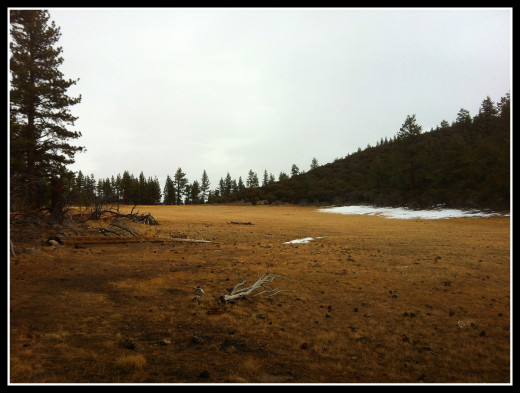 Winter view of Dry Pond