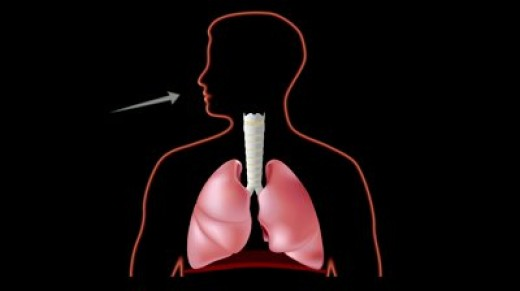 You can learn how to improve singing through  diaphragmatic breathing.