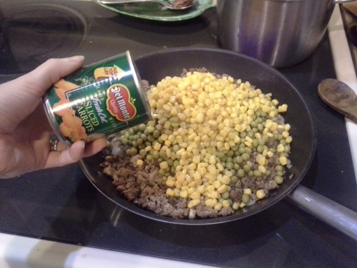 Step Eighteen: Add your carrots