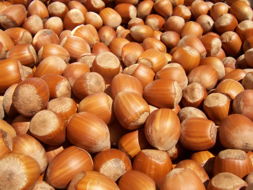 Nuts are a valuable source of protein for vegans.