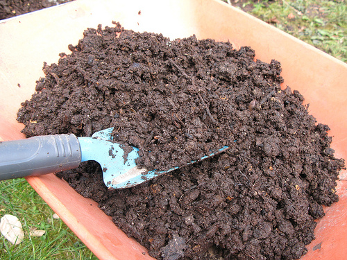 Sieved compost