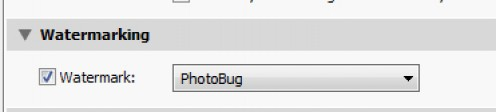 Adding a watermark in Lightroom