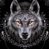 Raynecke profile image
