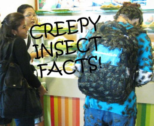 EWWWWW!!! Creepy Cockroach!
