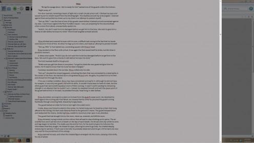 Fullscreen mode in Scrivener.